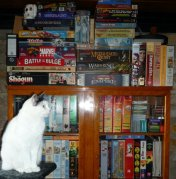 HFC cat Troja and her favorite place in front of our games collection!